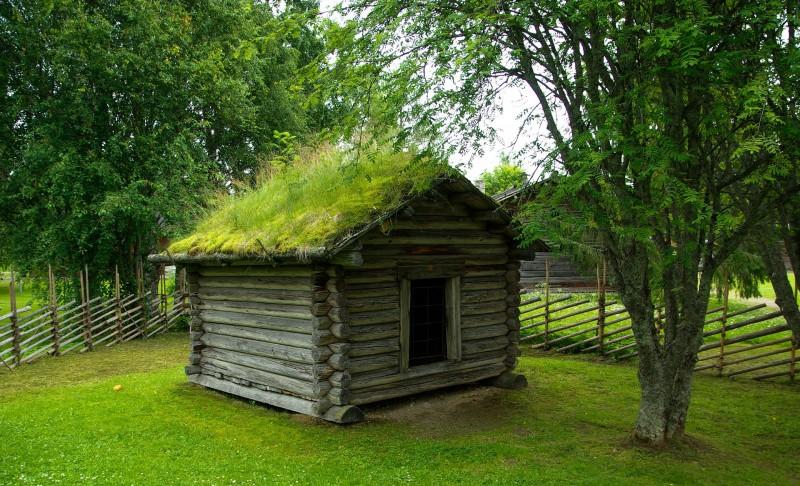 Sådan kan du nemt få et grønt tag på din bolig